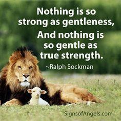 Gentleness1