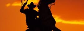cowboy-lasso