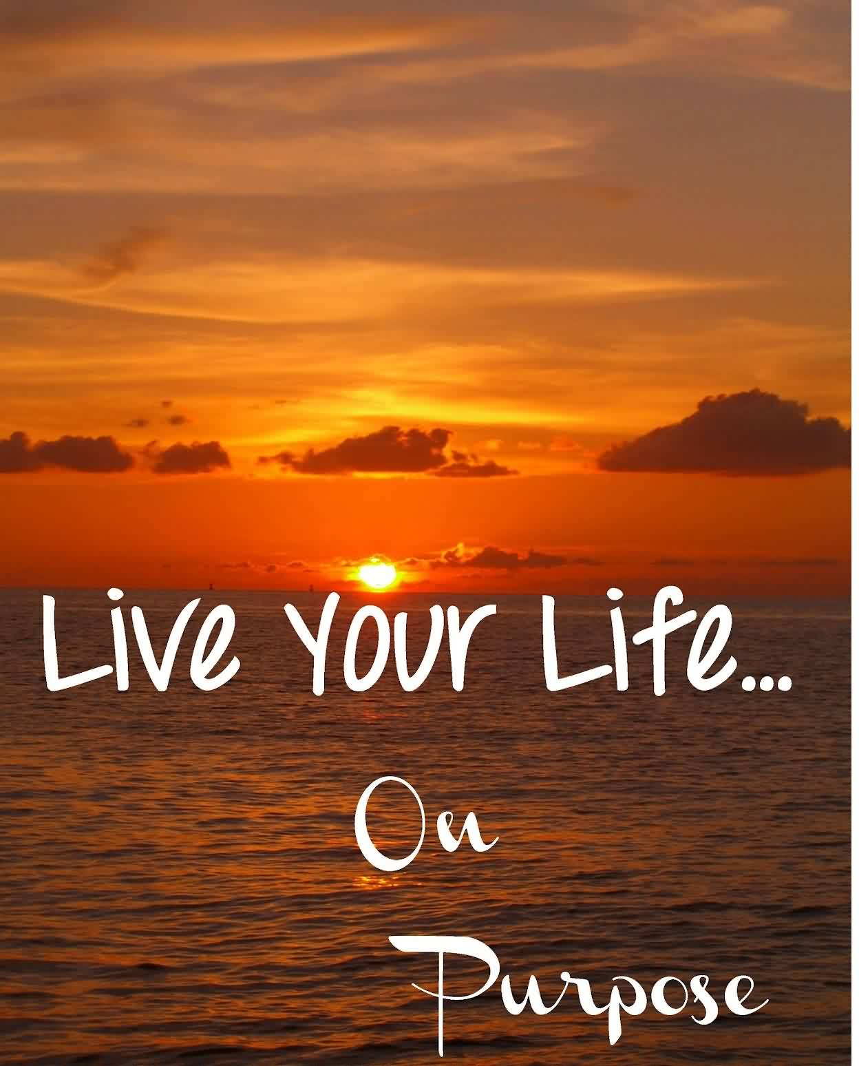 Day 210 - Living Your Life with Purpose, On Purpose #2 ...