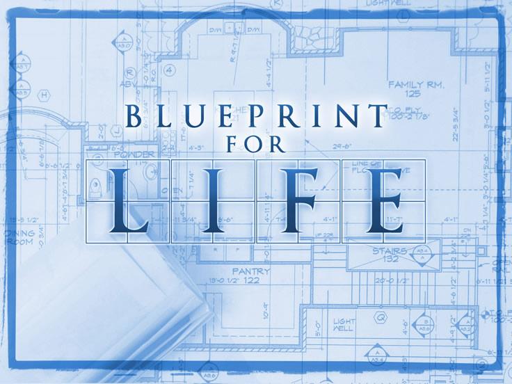 Day 220 your life plan blueprint an introduction wisdom trek blueprint for life malvernweather Images
