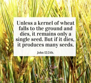 02-11-15-financial-fitness-god-is-waiting-for-you-to-plant-a-seed_mini
