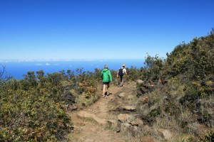 haleakala-10-12-12-near-the-trailhead