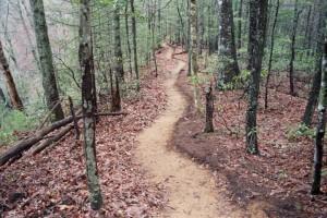trail_011