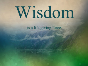 wisdom-is-a-life-giving-force-300x225