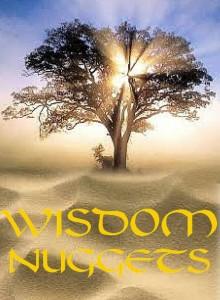wisdom-nuggets-642x1024