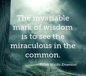 Mark of Wisdom 1
