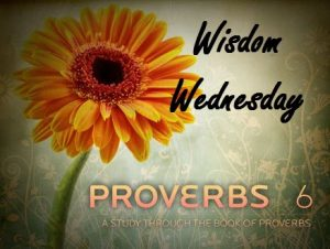 Wisdom Wednesday - Don't be a Fool