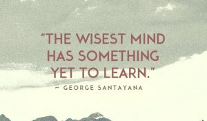 The Wisest Mind 1