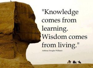 Wisdom Before Knowledge 1