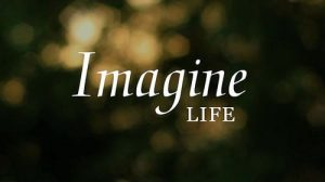 IMAGINE LIFE AS IT COULD BE 5