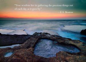 The Precious Things of Life 4