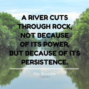 Persistence Fuels Success 3