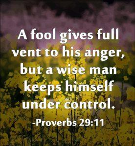Self-Controlled Wisdom 4