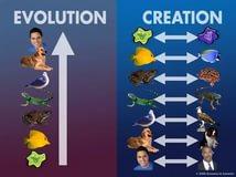 Creation vs. Evolution 4