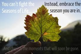 The Seasons of Life 2
