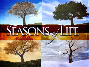 The Seasons of Life 4