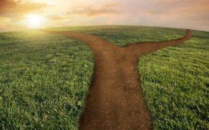Choose the Correct Path 1
