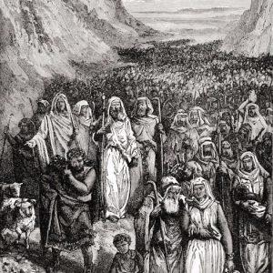 Walk Like an Israelite 2