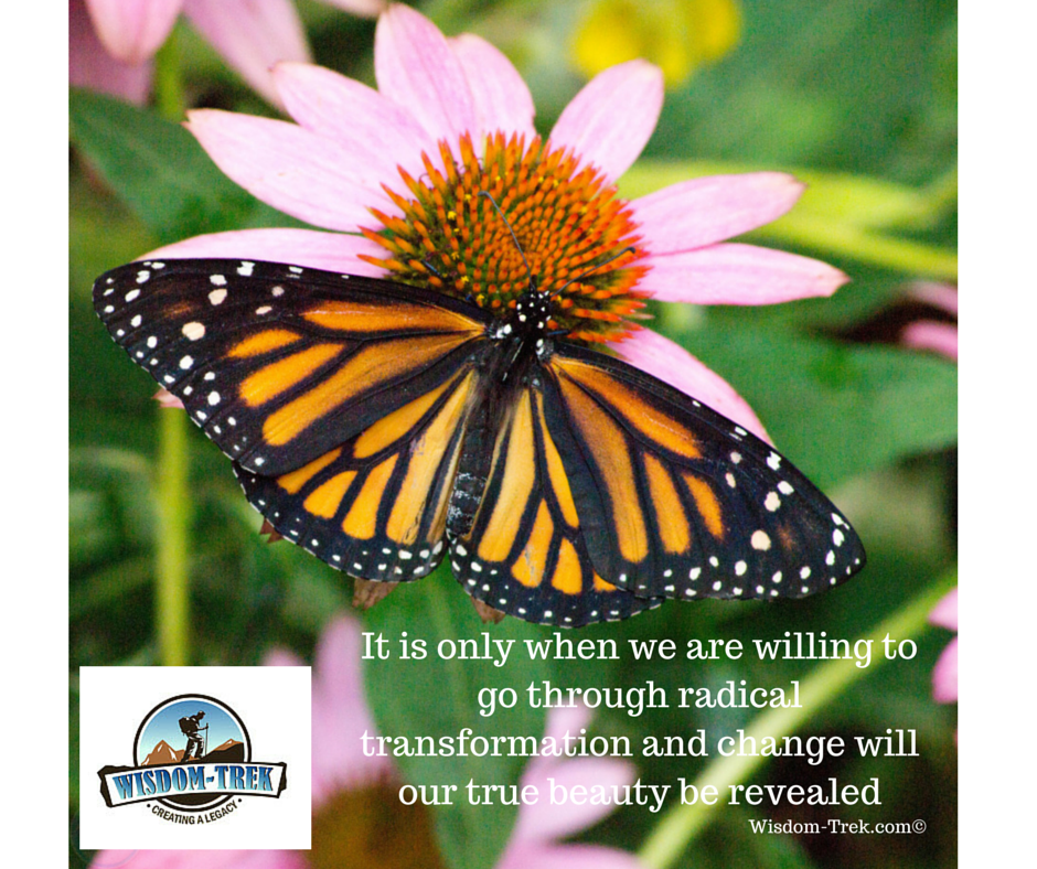 It is only when we are willing to go through radical transformation and change will our true beauty be revealed