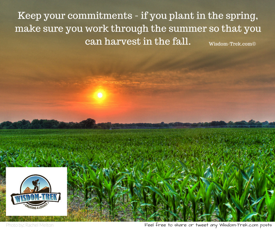 Keep your commitments - if you plant in the spring, make sure you work through the summer so that you can harvest in the fall
