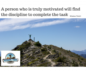A Person who is truly motivated will find the discipline to complete the task (1)