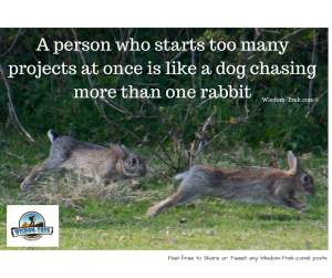 A person who starts too many projects at once is like a dog chasing more than one rabbit