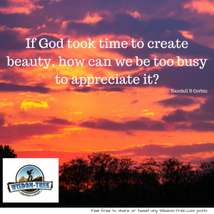 If God took time to create beauty, how can we be too busy to appreciate it-