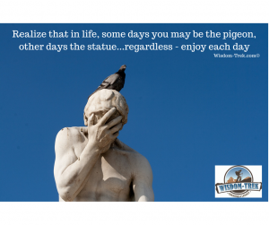 Realize that in life, some days you may be the pigeon, other days the statue...regardless - enjoy each day